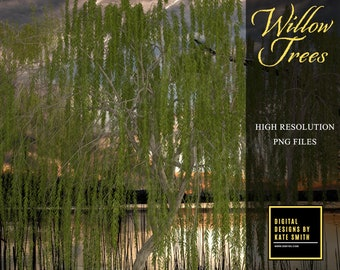 Willow Trees Overlays, Separate PNG Files, High Resolution, Instant Download, CUOK.