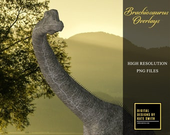 Brachiosaurus Overlays, Separate PNG Files, High Resolution, Instant Download, CUOK.
