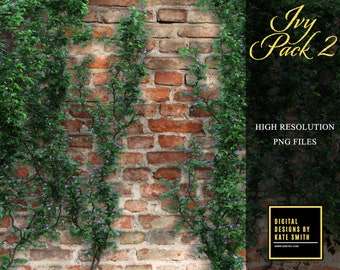 Ivy Overlays Pack 2, Separate PNG Files, High Resolution, Instant Download, Buy 3 get 1 free, CUOK.