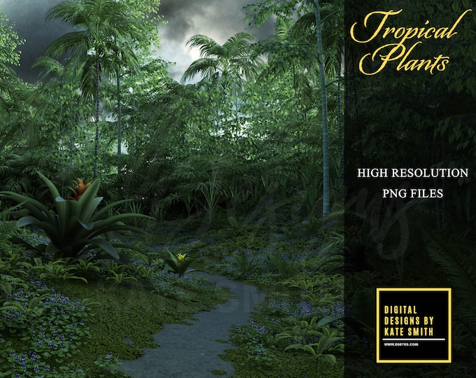 Tropical Plant Overlay Pack, LARGE pack, Separate PNG Files, High Resolution, Instant Download, Buy 3 get 1 free, CUOK.