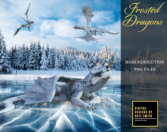 Frosted Dragon Overlays, Separate PNG Files, High Resolution, Instant Download, CUOK.