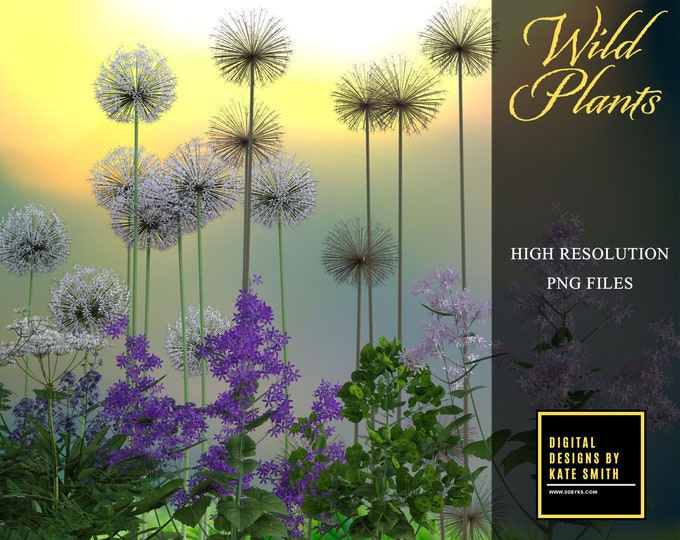 Wild Plants Overlays, Separate PNG Files, High Resolution, Instant Download. CUOK.