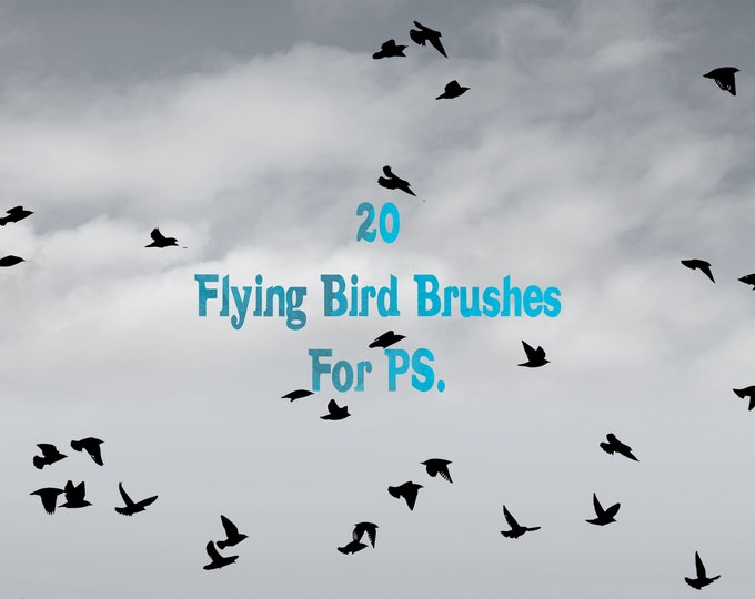 Buy 3 get one free. Flying Bird Brushes, 20 Assorted Design Brushes, Instant Download.