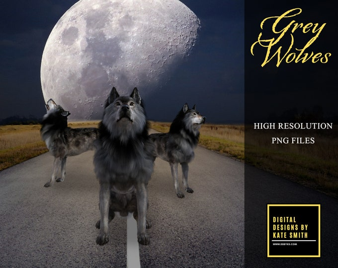 Grey Wolf Overlays, Separate PNG Files, High Resolution, Instant Download, CUOK, Buy 3 get 1 free.