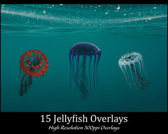 15 Jellyfish Overlays, High Resolution 300ppi, Separate PNG Files with Transparent Backing, Instant Download. CUOK