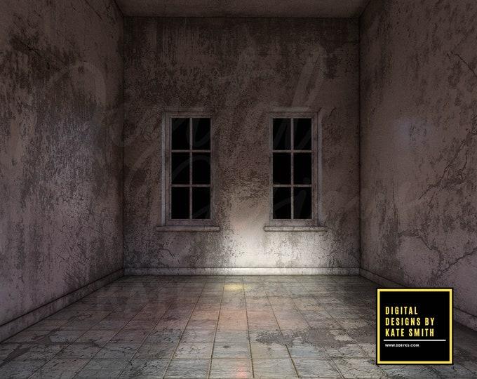 Asylum Digital Backdrop / Background, Transparent windows, Huge File, High Resolution, Instant Download.