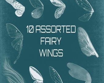 Buy 3 get one free. 10 Fairy Wing Photoshop Brushes, High Quality 300ppi, Fantasy Brushes, Instant Download.