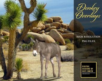 15 Donkey Overlays, Separate PNG Files, High Resolution, Instant Download.