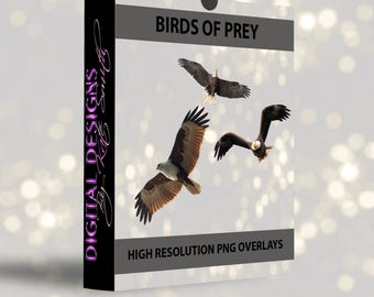 Buy 3 get one free. Birds of prey Overlays, Separate Png's with Transparent Backing, High Resolution, Instant Download.