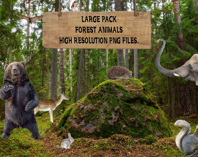 Buy 3 get one free. Large Pack of 20 Forest Animal Overlays, Large Files, Separate PNG Files, High Resolution, Instant Download.