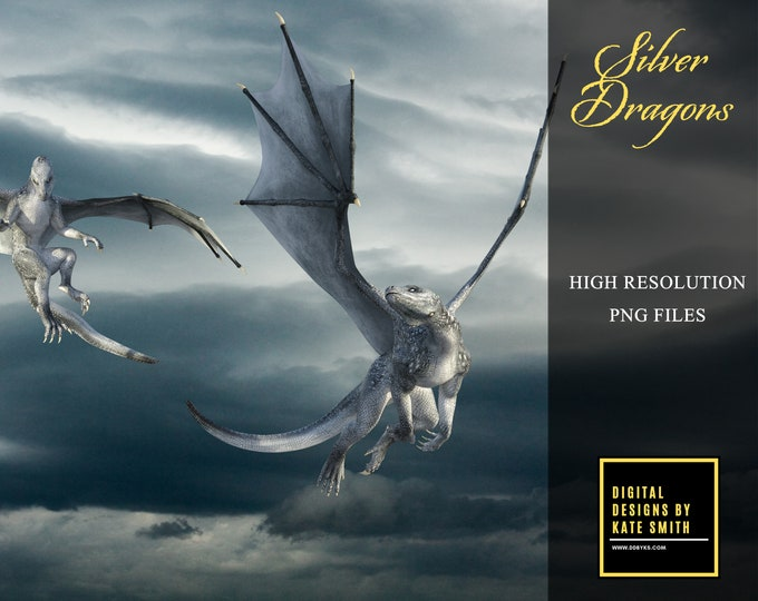 12 Silver Dragon Overlays, Separate PNG Files, High Resolution, Instant Download, Buy 3 get 1 free, CUOK.