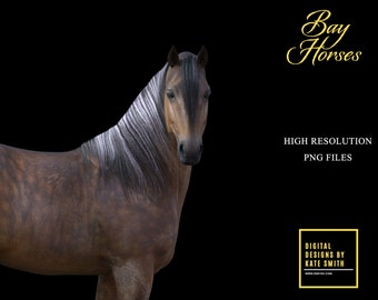 Buy 3 get one free. Bay Horse Overlays, Separate PNG Files, High Resolution, Instant Download.