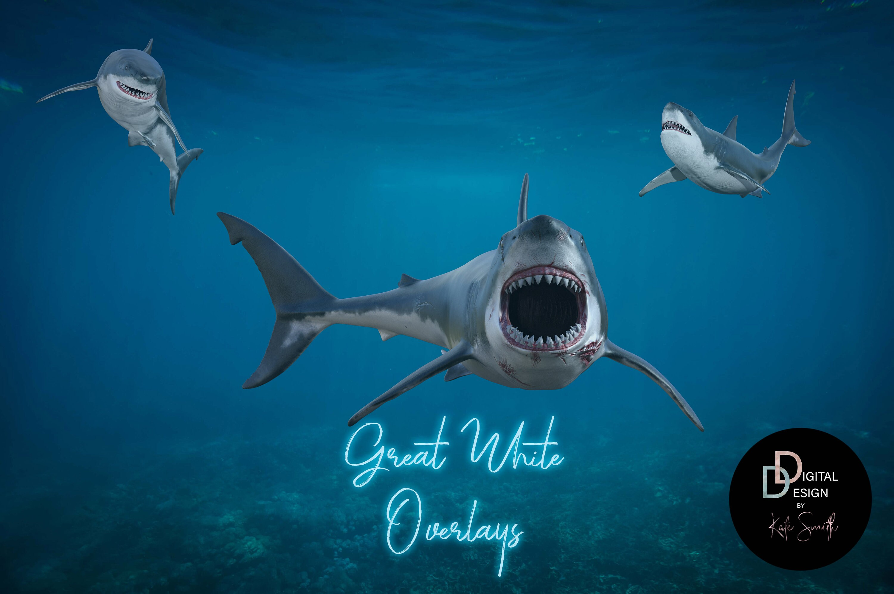 12 Great White Shark Overlays Separate PNG Files High
