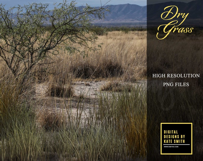 Dry Grass Overlays, Separate PNG Files, High Resolution, Instant Download, CUOK.