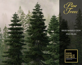Pine Trees Overlays, Separate PNG Files, High Resolution, Instant Download. CUOK.