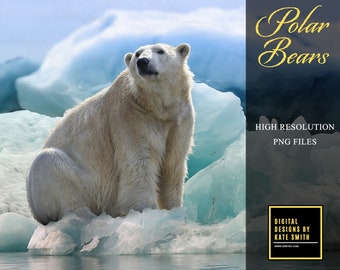 Buy 3 get one free. Polar Bear Overlays, Separate PNG Files, High Resolution, Instant Download.