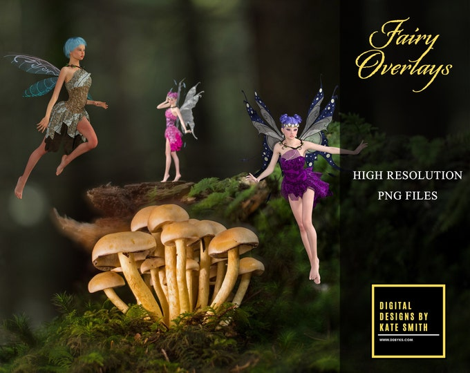 Assorted Fairy Overlays, Separate PNG Files, High Resolution, Instant Download. CUOK.