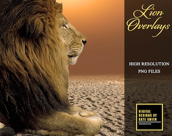 Lion Transparent Overlays, Separate PNG Files, High Resolution, Instant Download, CUOK.