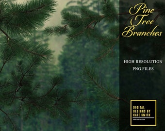 Pine Tree Branches Png Overlays, Separate PNG Files, High Resolution, Instant Download. CUOK