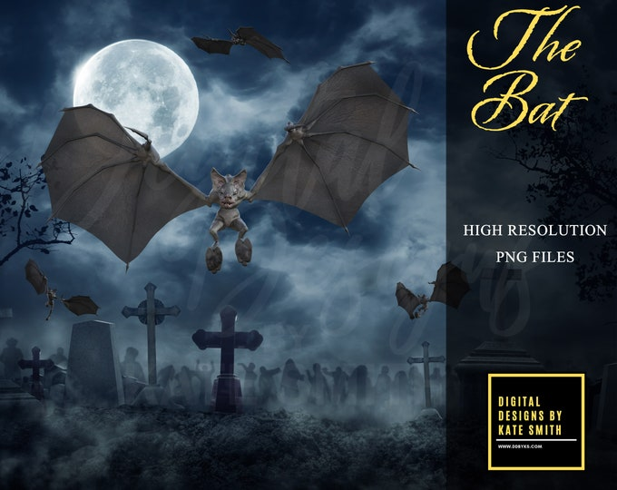 The Bat Overlays, Separate PNG Files, High Resolution, Instant Download. CUOK