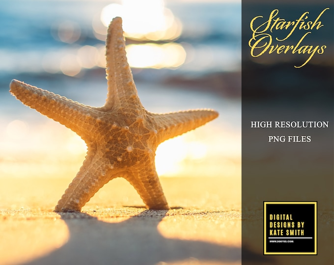 15 x Starfish Overlays, High Resolution, Separate PNG Files, Instant Download.