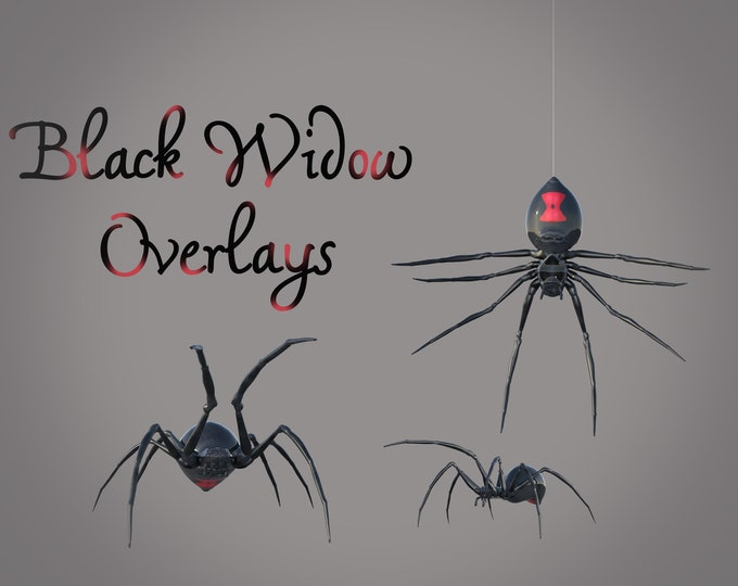 Black Widow Spider Overlays, Separate PNG Files, High Resolution, Instant Download, Buy 3 get 1 free, CUOK.