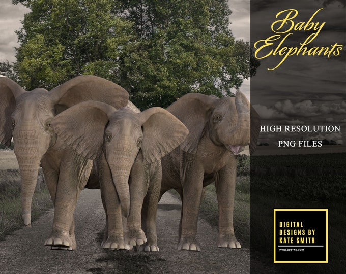 Baby Elephant Overlays, Separate PNG Files, High Resolution, Instant Download. CUOK, Buy 3 get 1 free.