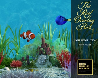 The Reef Overlay Pack, 35 Assorted png files, Separate PNG Files, High Resolution, Instant Download. Buy 3 get 1 free.