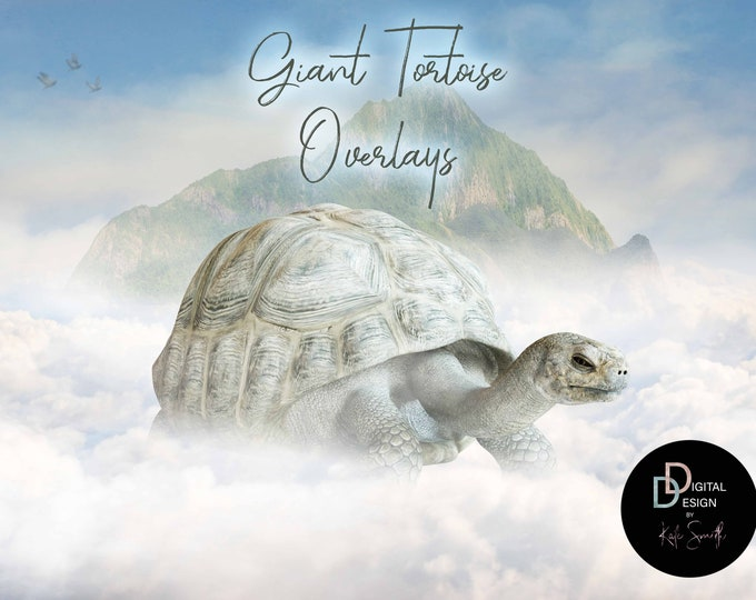 Giant Tortoise Overlays, Separate PNG Files, High Resolution, Instant Download.