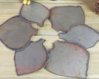 Metal Cut Leaves, Leaf Petal Cut Plates, Metal Flower Pieces, Flower Art, Assemblage, Altered Art, Metal Pieces, Found Objects #117-36