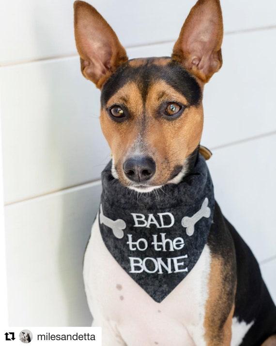 Dog Bandana  Bad to the Bone  Customizable