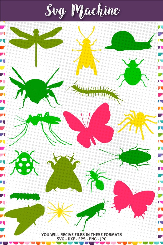 Bugs SVG Cute Insect Cutting Templates Garden Animals | Etsy