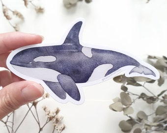 Orca Sticker, Killer Whale Sticker, Ocean Sticker, Vinyl Stickers, Gift For Her, Cute Stickers, Laptop Decal, Gifts Under 5, Gift for Divers