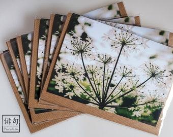 Eco friendly cards   Etsy