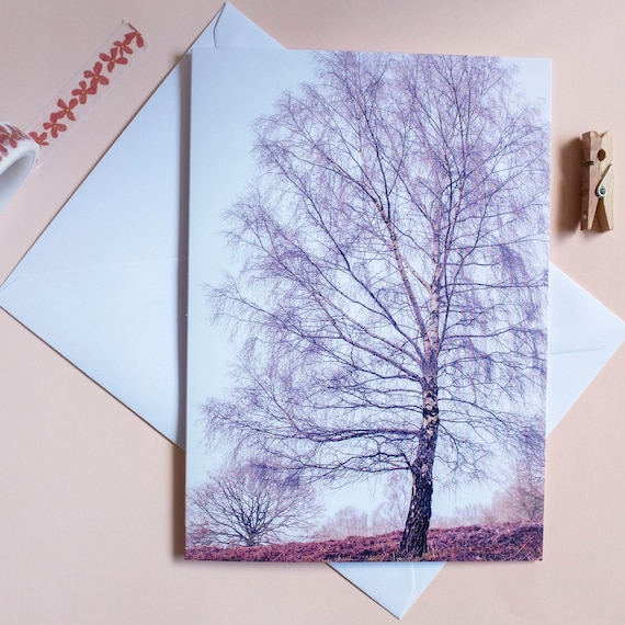 Winter Birch Tree Card With Haiku Poem Photographic English Landscape Card Eco Art Card Cards For Dad Nature Poetry Card Card With Poem