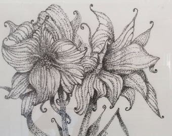 "Original Pen and Ink drawing ""Lilies"" by DM Horn"