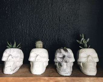 Cement Skull Planter, marble and off white