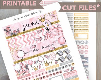 Flamingo June Erin Condren Monthly Sticker Kit,June Monthly Sticker kit,June Stickers,Printable Stickers,Flamingo Stickers,Summer Stickers