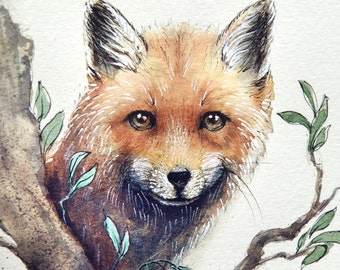 Foxes Wall Art