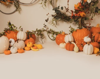 Fall Digital Backdrop/Backdrop with White/Orange Pumpkins, Hoops Twinkle Lights (set of 2)