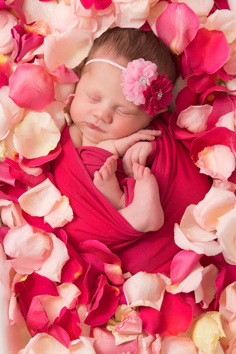 Bed Met Rozen.Licht Roze Donker Roze Rozen Bed Van Rozen Rose Milkbath Textuur Overlay Papier
