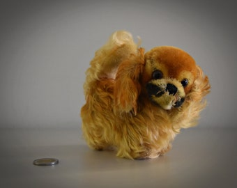 Vintage original Steiff Peky / cute Pekinese doggy / Mohair / button in earpiece, label and breast label missing / late 50s