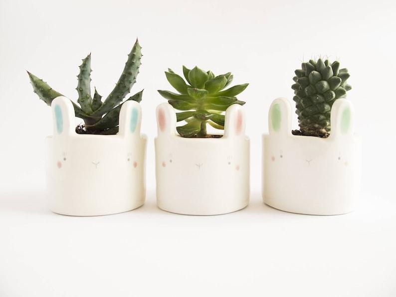 Animal Plant Pot Ceramic Bunny Face Planter for Succulent. A image 0