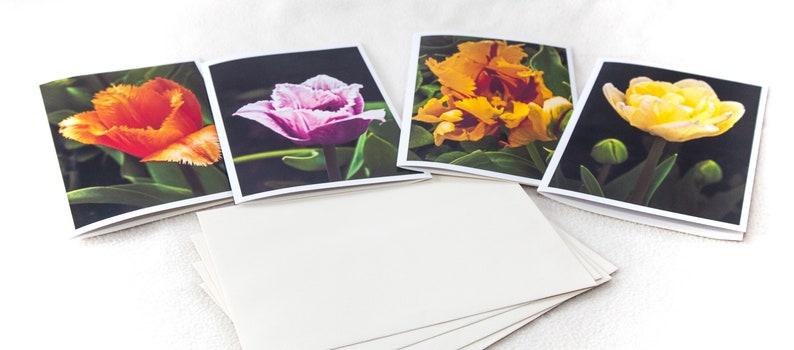 Tulip Note Cards