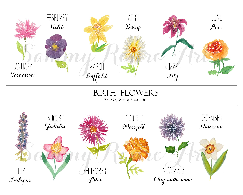 Watercolor birth flowers digital download monthly flowers etsy izmirmasajfo