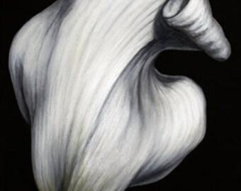 Lily Fine Art Card (back)