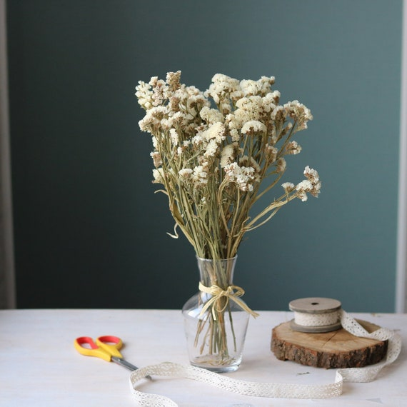 Dried White Statice Dried Statice Bouquet Dried Flowers Etsy