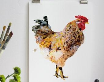 Chicken Art Print, Nature, Wildlife, Chicken Print, Chickens, Nature Print, Animal Print, Chickens and Hens, Hens, Wall Print, Nature Print