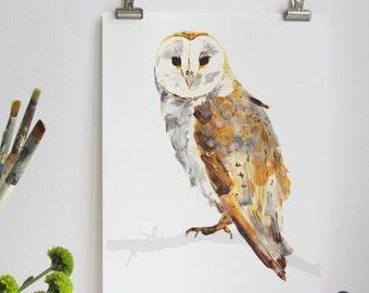 Barn Owl Print, Barn Owl Print, Illustration Bird Print, Bird Art Print, Nature Print, Bird Print, Wall Print, Wildlife, Wildlife Art Print