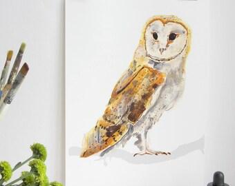 Barn Owl Bird Print, Barn Owl Print, Illustration Bird Print, Bird Art Print, Nature Print, Bird Print, Wall Print,  Wildlife Art Print